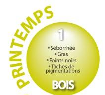 PRINTEMPS - Elément BOIS - Vésicule Biliaire - Foie