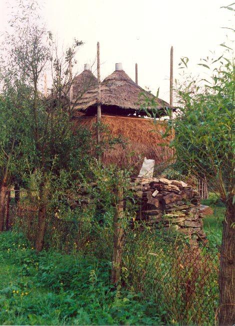 Brogi, typowe dla krajobrazu Pogórza. Nowosielce Kozickie 2002.