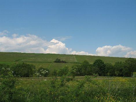 Krajobraz rozciągajacy się wzdłuż drogi do lasu.