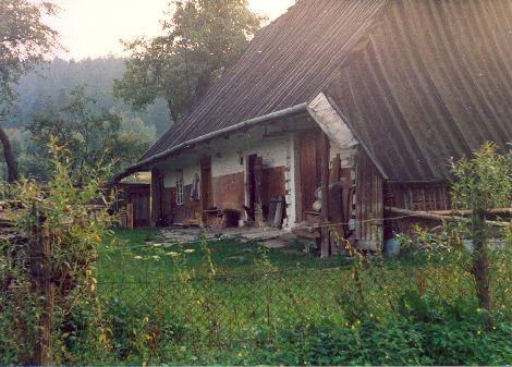 Tradycyjny dom w Nowosielcach Kozickich, nawiązujący do budownictwa bojkowskiego.  Czterospadowy dach, niegdyś kryty kiczką. Stan na 2002 rok.