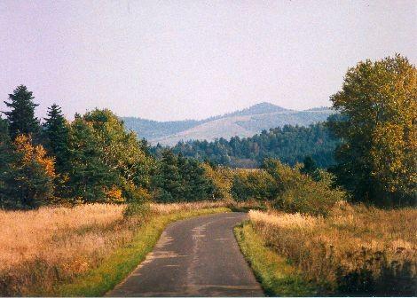 Droga do Hoszowczyka.