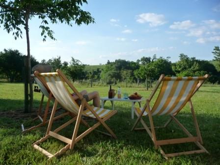 Gîte l'Estebot  Ruch Gironde-détente côté vignes