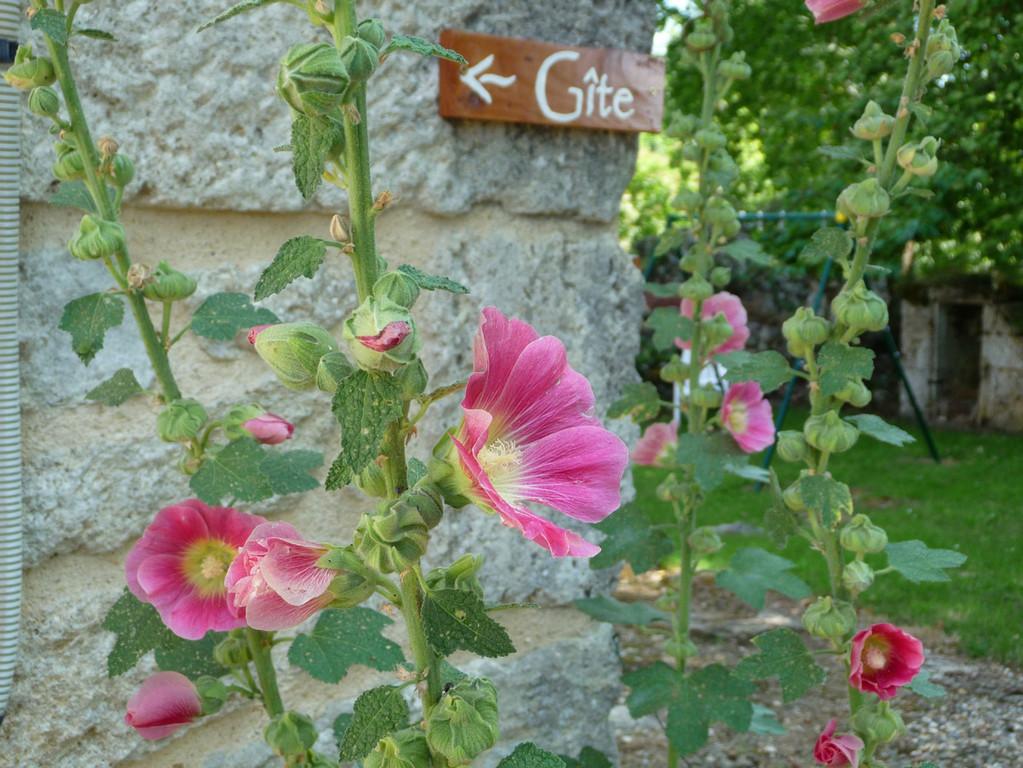 Gîte l'Estebot  Ruch Gironde- Accueil