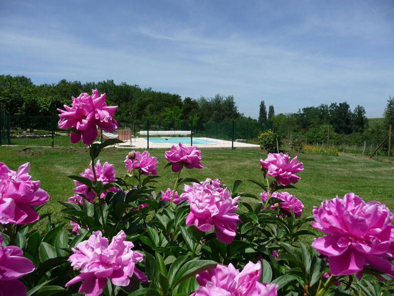 Gîte l'Estebot  Ruch Gironde-piscine