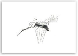 Stchmücke