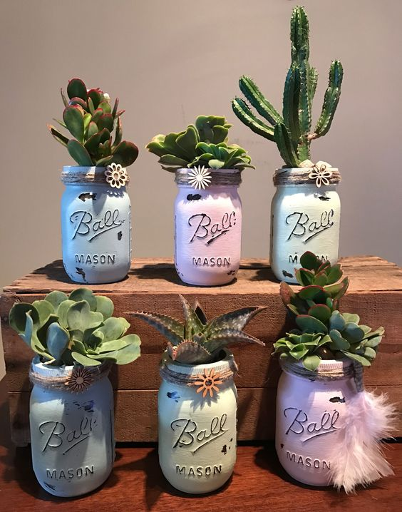 mason jars with cactus