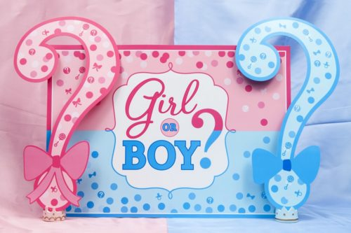 baby shower y el gender party