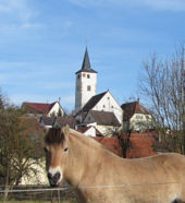 Lampoldshausen