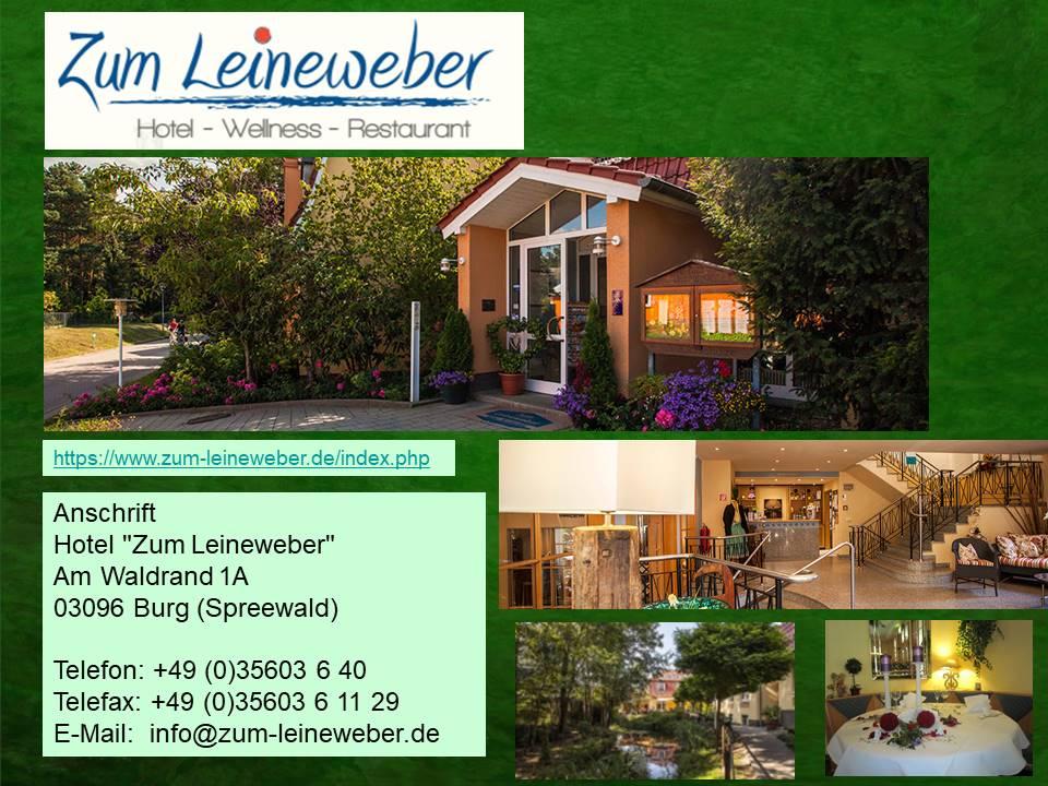 Hotel Zum Leineweber in Burg
