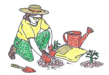 orto libero dalle zanzare
