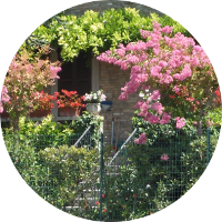 antizanzare freezanz per i giardini privati