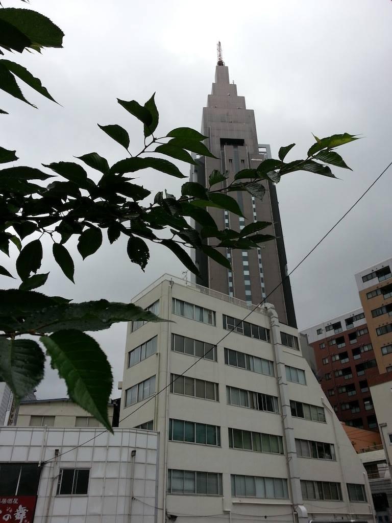 鬱陶しい季節到来でんなぁ...(;´Д`)ハァ… 【2014年6月6日】