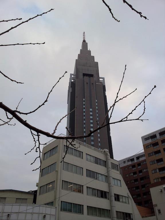 今は雲っていまつが、昼前から夕方は晴れるってよ。 【2013年1月24日】