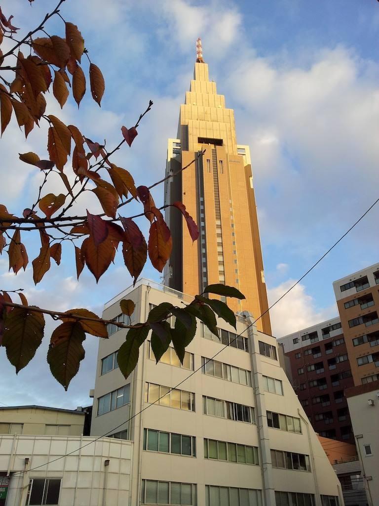 大阪で初雪やて。わてほんまにギョギョギョギョ。 【2013年11月29日】