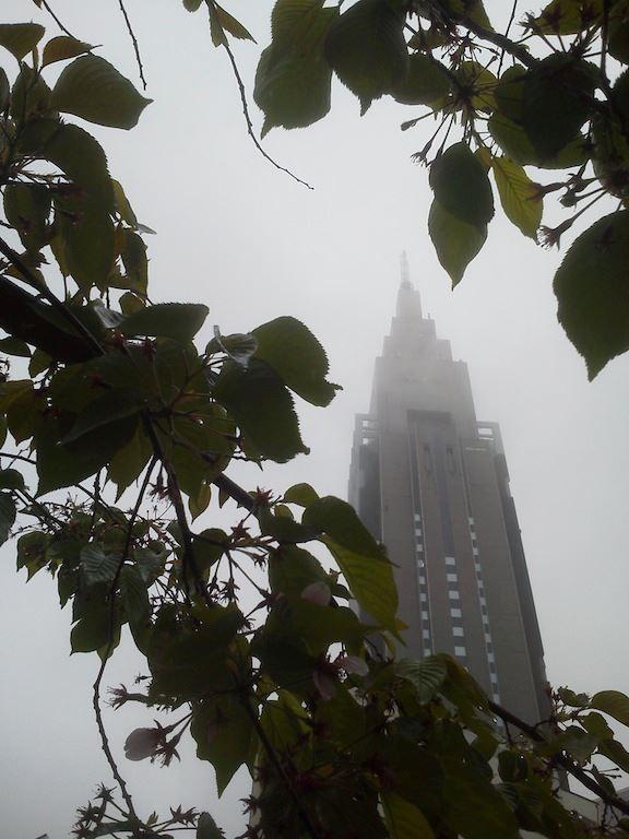 ただの木と雨に煙りやや霞み気味のドコモちゃん。 【2012年4月23日】