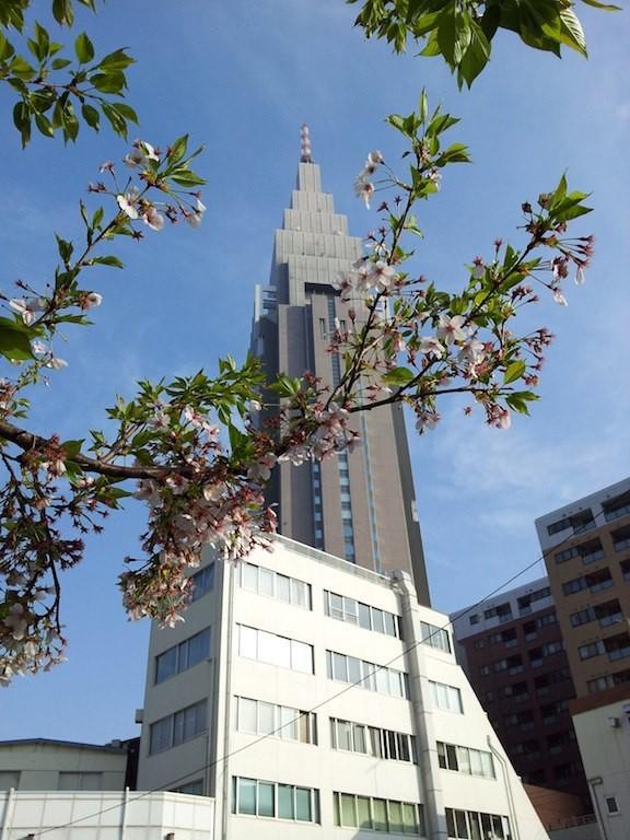 ドコモさくら、しゅうぅぅ~~りょおぉぉ~~! 【2013年4月1日】