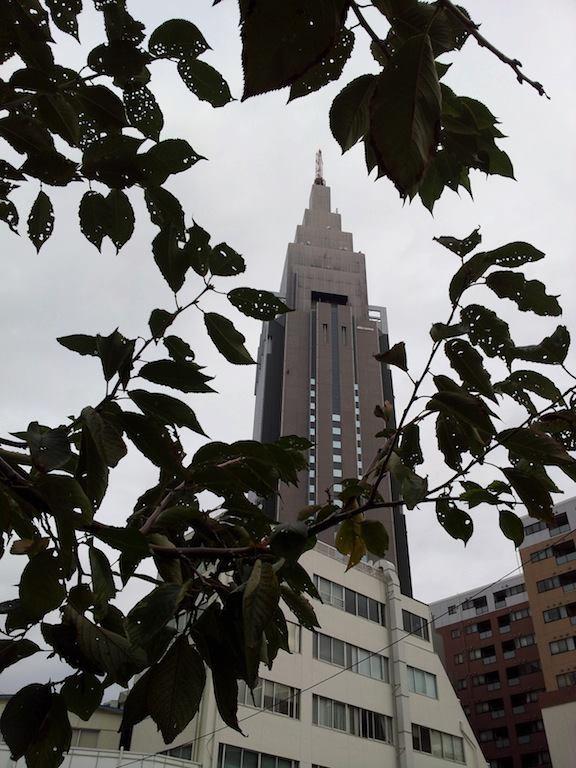 今は曇ってまつが、夕方からは晴れてくるってよ。 【2012年10月25日】