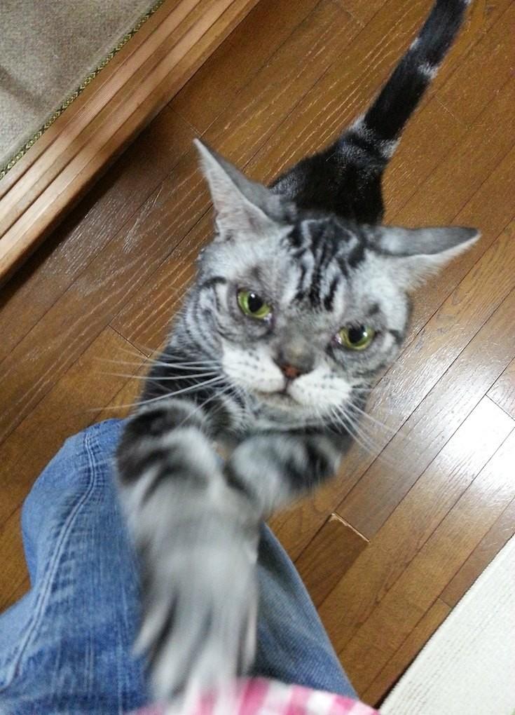 松山ちゃん、祝・米プロゴルフツアー初優勝! でも、ドライバー折ったら、あかんがなガリ... 【2014年6月2日】