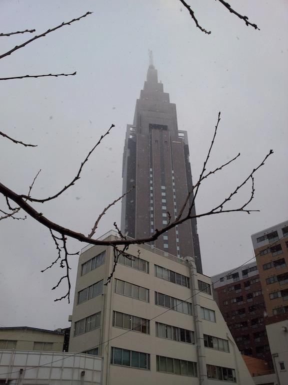 ホワイト・ドコモダケ。{{{{(*+ω+*)}}} }寒うぅ~ 【2013年1月28日】