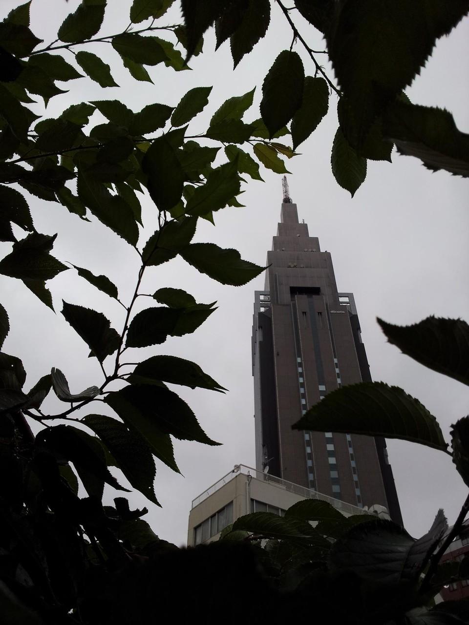 梅雨らしい空でつが、この後回復の見込みだって。 【2012年7月2日】