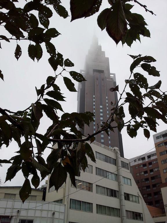 霞がかっているが、日中は晴れて23度だってよ。 【2012年11月12日】