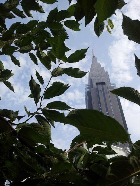 今朝のLINEお天気によると、今日は (・ω・`i)アツー 【2012年7月25日】