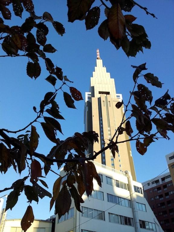 都心の本日の最高気温は、昨日より2度高い12度ということだが、ぢゃあ19度予報の昨日は10度だったんかいっ! 寒かったはずだよ、奥さん。 【2012年11月27日】