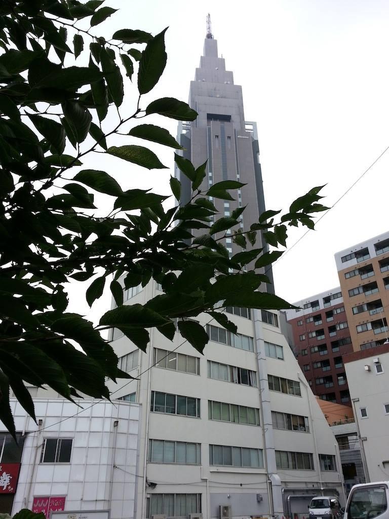 梅雨明け、猛暑入り…だな。 (υ´Д`)アツー 【2014年7月22日】