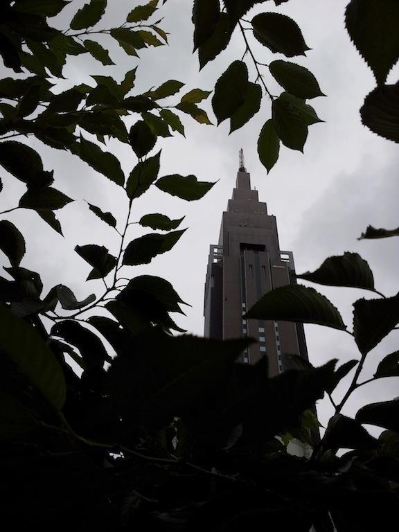 梅雨も明けてないのに、すっかり秋めいてやんの。 【2012年6月25日】