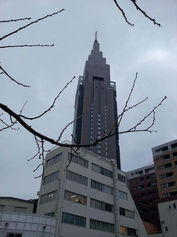 昨晩は雪が降らずに残念だったのぉ、めぐちゃん! 【2013年1月22日】
