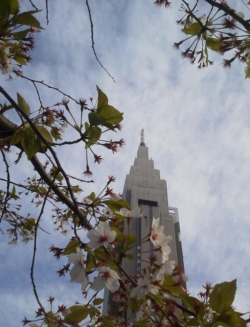 雲のカンジといい、一気に秋っぽい13日の金曜日。 【2012年4月13日】