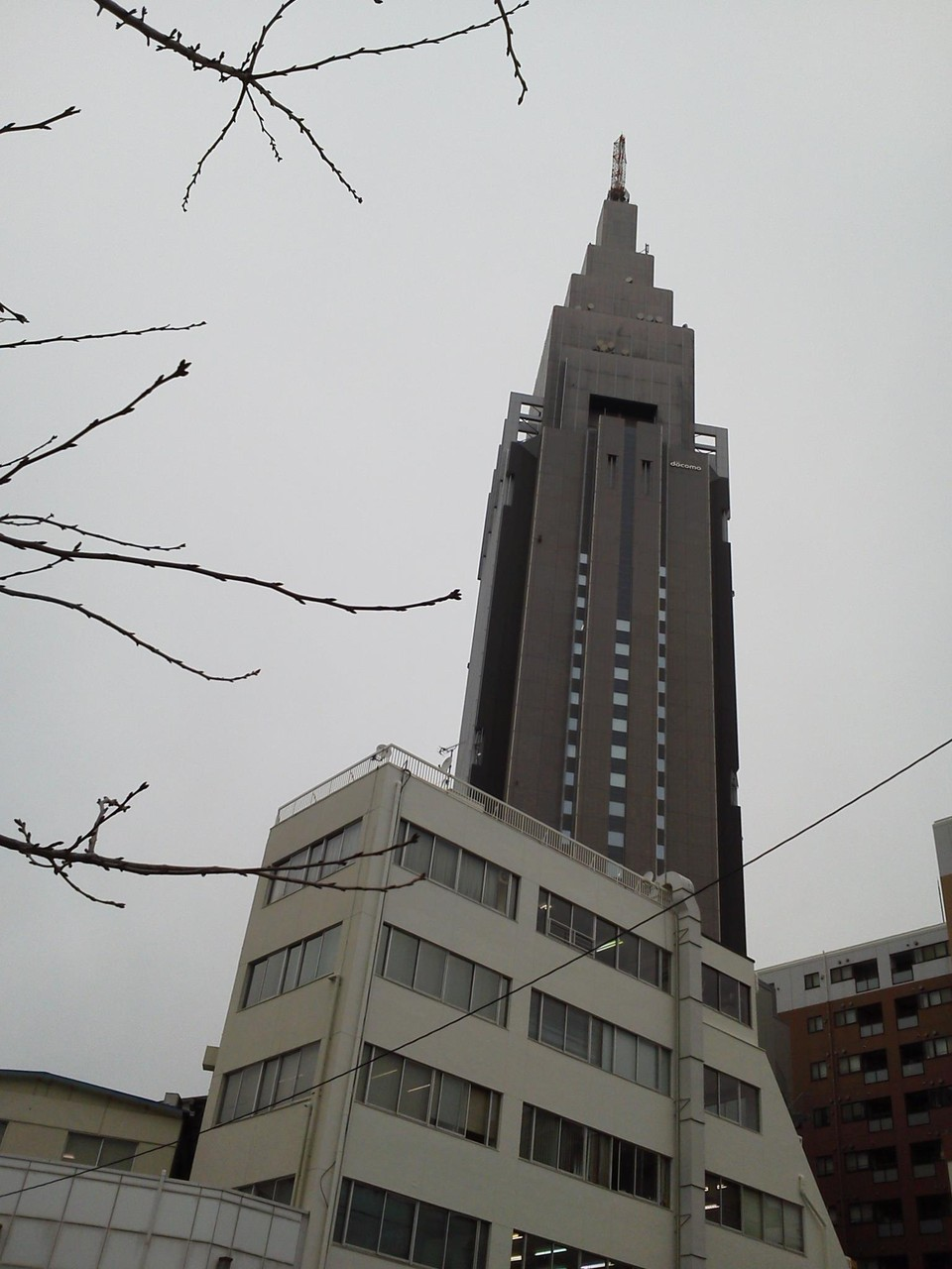 写真ではわかりませんが、粉雪なう。 【2012年2月16日】