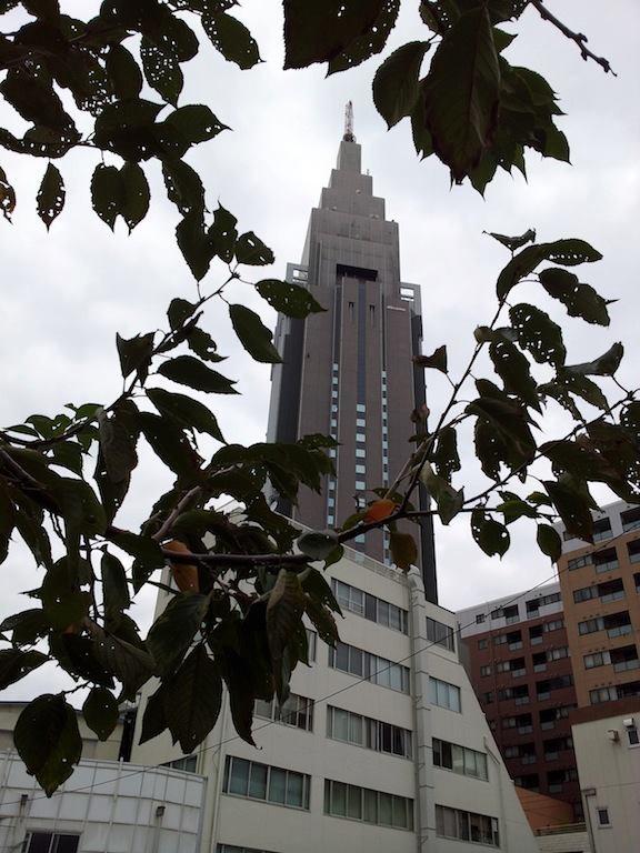 今日は、肌さみぃ~・デイヴィスJr. (((=_=))) 【2012年11月3日】