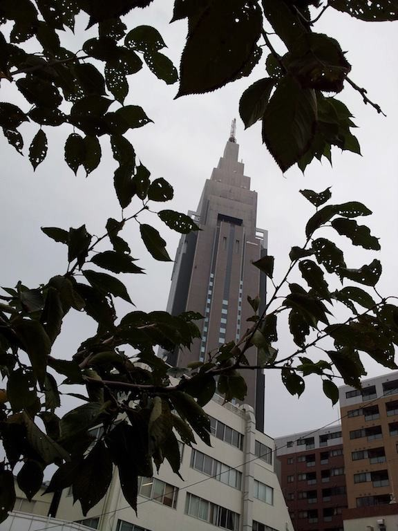 【東京地方】今日は、曇りで昼前から雨となるでしょう。明日は、曇りで未明は雨となりますが、午後は晴れるでしょう…だそうだ、奥さん! 【2012年10月18日】