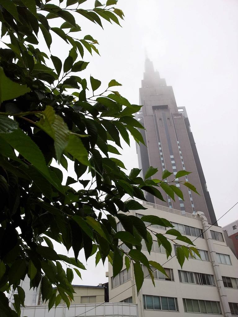 今年は、梅雨入りも例年より早そうでつね。 【2013年5月20日】