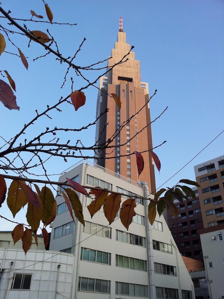 ♪ 落葉の舞い散る 停車場は~ …だな。 【2013年12月4日】