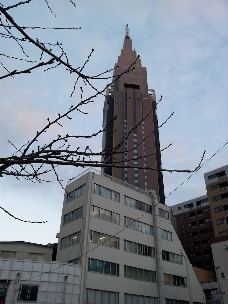 日中の最高気温が7度でつって。寒いはずでつね。 【2014年1月14日】