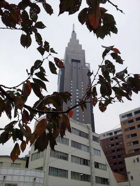 三連休初日。雨模様ドコモちゃん。 【2012年11月23日】