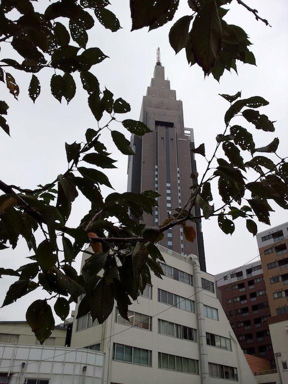 今日は概ね曇りで、夜は雨かも…だそうでつよ。 【2012年11月5日】
