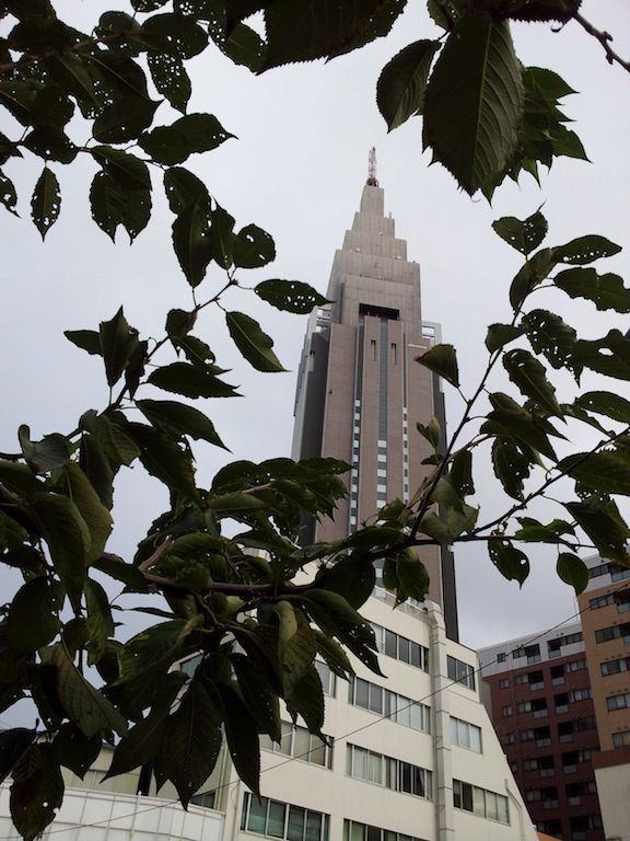 今日は、日中は晴れるがおおむね曇りだ、奥さん! 【2012年10月4日】