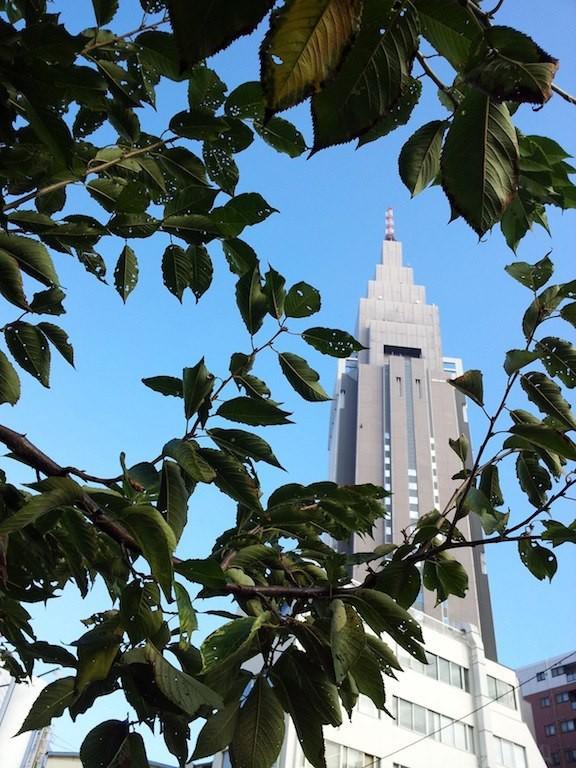 日中は暑いらしいっすが、朝は涼しいっす、先輩! 【2012年10月15日】