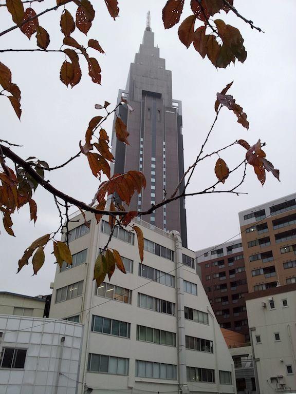昼前まで雨となり、雷を伴う時間もあるってよ。そすて、昨日よりさらに数枚散っている葉っぱ。 【2012年12月4日】