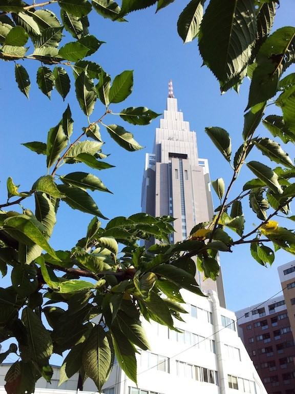 昨日は傘無しヒラメさんやシーツ2枚洗濯ひさよにガセネタを流すてすまいますたが、おでが天気予報すているわけぢゃないので、堪忍ね。で、今日は、『東京地方では、昼過ぎから夜遅くまで、落雷や突風、急な強い雨に注意してください』だそうでつ。 【2012年9月11日】