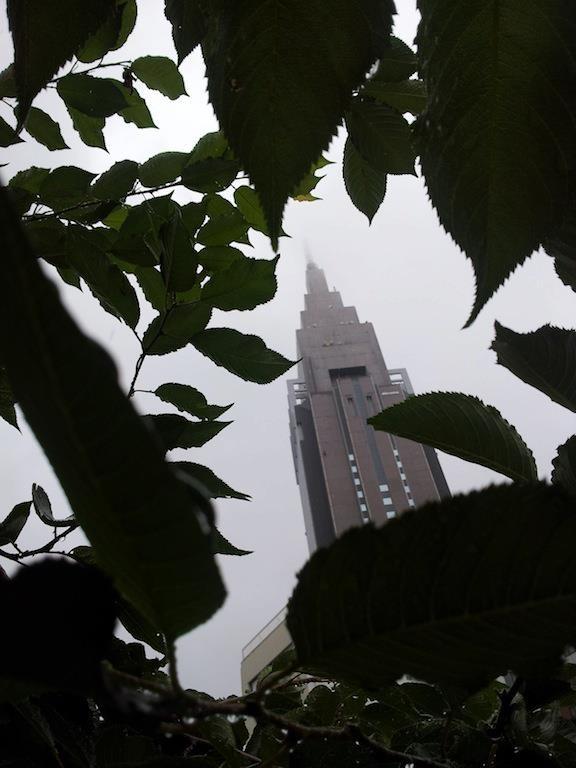 小雨降るなか日曜ドコモ。チョイサム( ´゚д゚)(゚д゚` )ネー 【2012年7月8日】