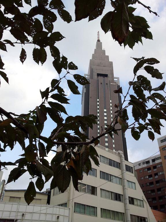 晴れ時々曇り、午後はにわか雨の降る所もだって。 【2012年11月13日】