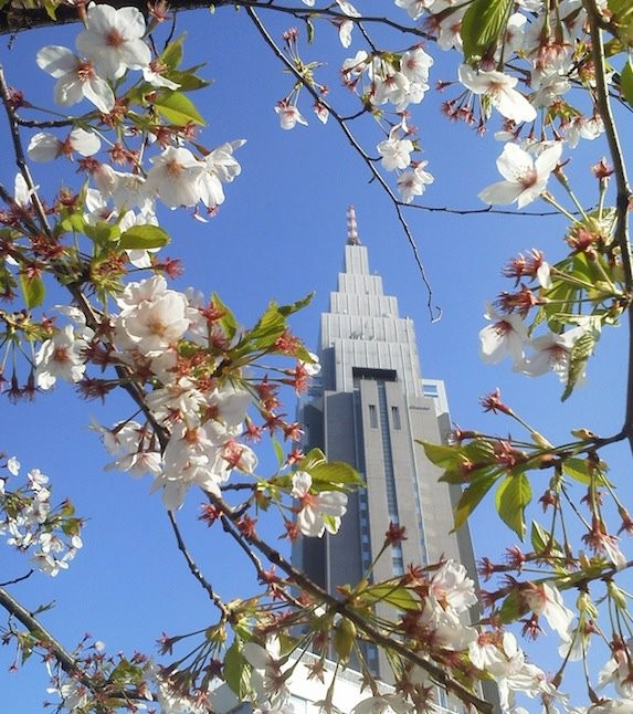 ええ天気やのぉ~。春なのに秋晴れっぽいっす。w 【2012年4月12日】