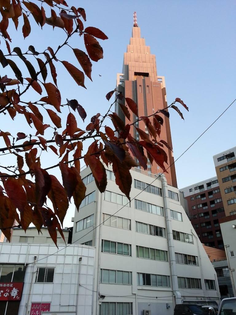 今日は、小春日和でつ。トゥース!d(`へ´). 【2014年11月27日】