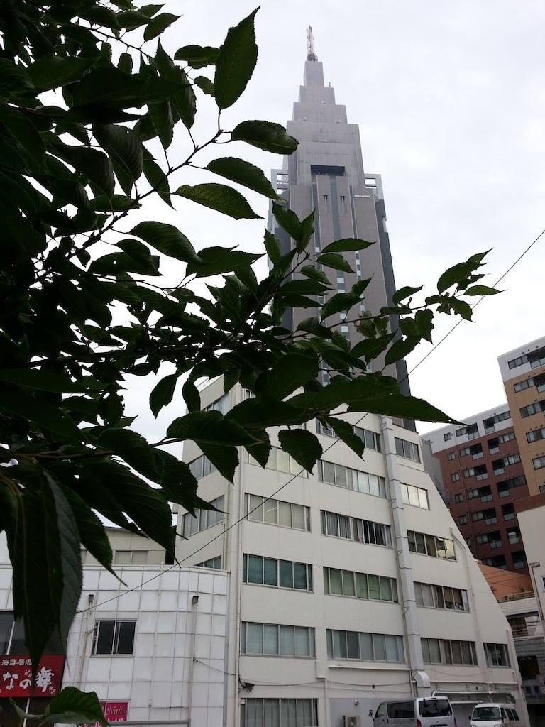 今日は33度の猛暑日。そすて夕方は雷雨かも。 【2014年7月14日】
