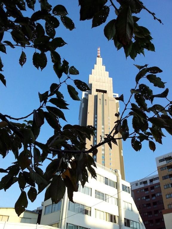 突き抜けるような青! 新党、ドコモの塔でつ。w 【2012年11月14日】