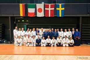 Taikai Internazionale a Yonago  2013